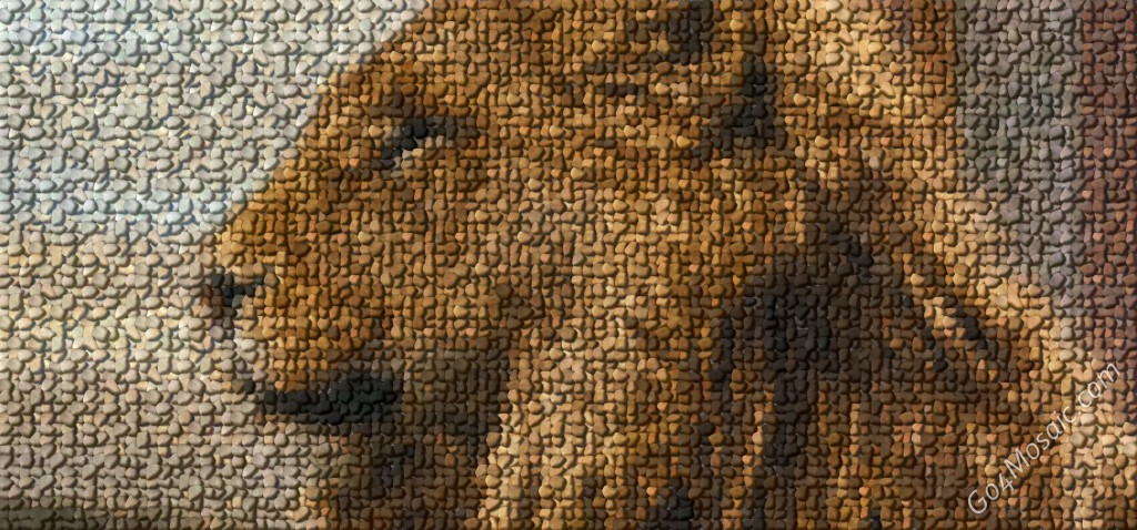 Aslan /The Chronicles of Narnia/ mosaic from Pebbles