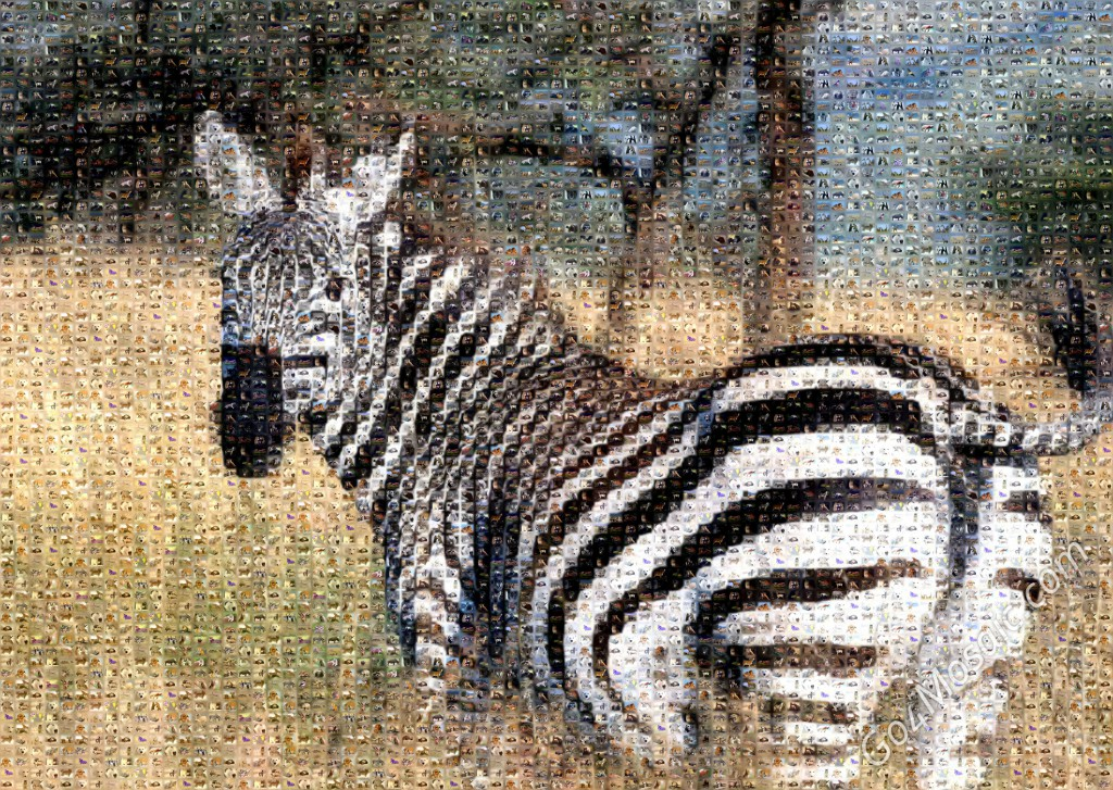 Zebra mosaic from Animals