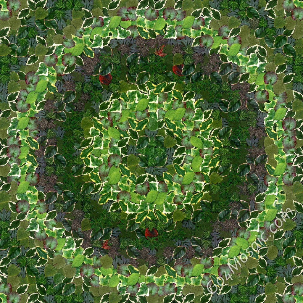 Circle mosaic from Leaves
