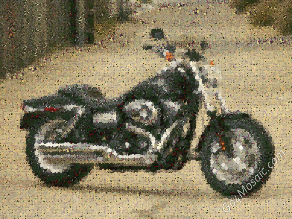 Harley mosaic from leaves