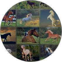 Horses tileset