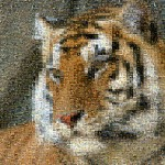 Tiger mosaics from animals - adaptive merging: none and merge with original image: 0%