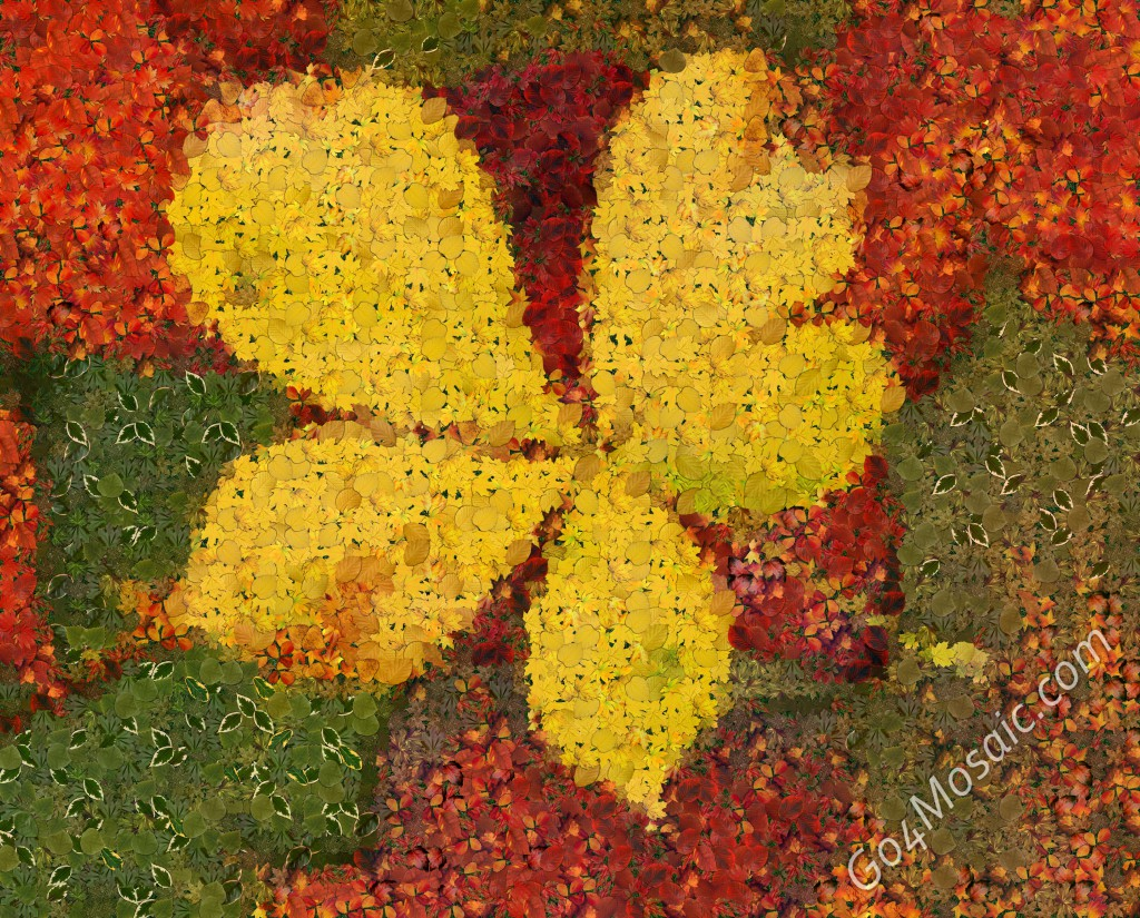 Autumn leaves mosaic from 3618 leaves