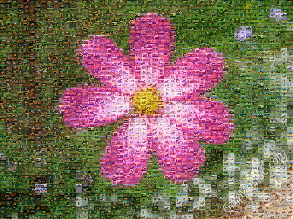 Pink Flower mosaic from Horses